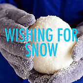 Wishing For Snow von Various Artists