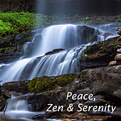 8 Perfect Zen Sounds: The Serene Sound of Rain for Your Relaxation and Wellbeing by Serenity Spa: Music Relaxation