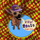 Play & Download Viva House by Various Artists | Napster