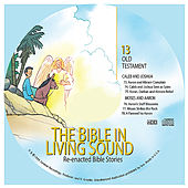 13. Caleb and Joshua/Moses and Aaron by The Bible in Living Sound