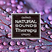 Natural Sounds Therapy by Native American Flute