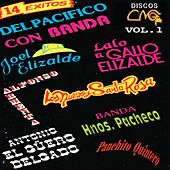 14 Exitos Vol. 1 by Various Artists