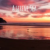 A Serene Sea by Meditation Music Zone