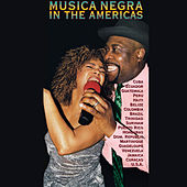 Musica Negra in the Americas [2000] by Various Artists