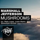 Mushrooms (Remixes, Pt. 2) by Marshall Jefferson