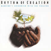 Play & Download Rhythm Of Creation by Studio Musicians | Napster