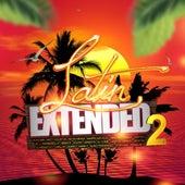 Latin Extended, Vol. 2 de Various Artists