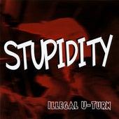 Illegal U-Turn by Stupidity