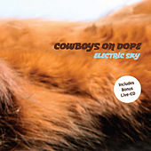 Play & Download Electric Sky by Cowboys On Dope | Napster