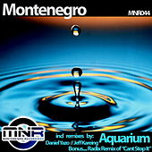 Play & Download Aquarium (Remixes) by Monte Negro | Napster