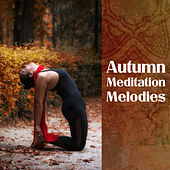 Autumn Meditation Melodies by Chinese Relaxation and Meditation
