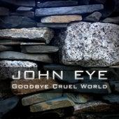 Goodbye Cruel World by John Eye