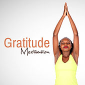 Gratitude Meditation by Nature Sound Series
