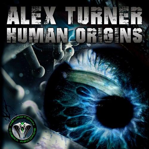 Human Origins - Single de Alex Turner