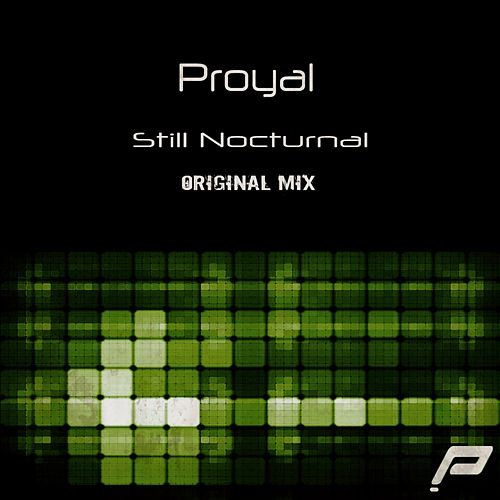 Still Nocturnal by Proyal