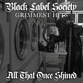 All That Once Shined von Black Label Society