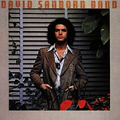 Play & Download Promise Me The Moon by David Sanborn | Napster