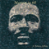 Play & Download Marvin Is 60: A Tribute Album by Various Artists | Napster