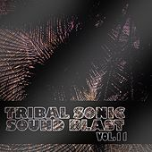 Tribal Sonic Soundblast,Vol.11 by Various Artists