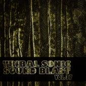 Tribal Sonic Soundblast,Vol.37 by Various Artists