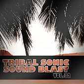 Tribal Sonic Soundblast,Vol.32 by Various Artists