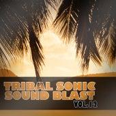 Tribal Sonic Soundblast,Vol.12 by Various Artists