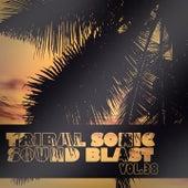 Tribal Sonic Soundblast,Vol.38 by Various Artists