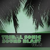Tribal Sonic Soundblast,Vol.15 by Various Artists