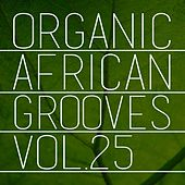 Organic African Grooves, Vol.25 by Various Artists