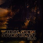Tribal Sonic Soundblast,Vol.49 by Various Artists