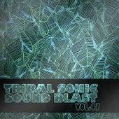 Tribal Sonic Soundblast,Vol.47 by Various Artists