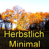 Herbstlich Minimal (Part 2) by Various Artists