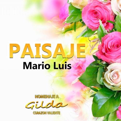 Paisaje by Mario Luis