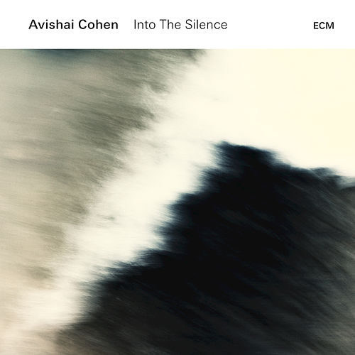 Into The Silence by Avishai Cohen (bass)