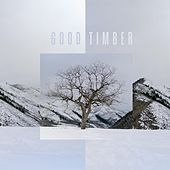 Good Timber by Drew Danburry
