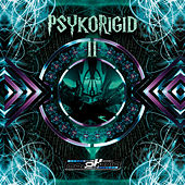 Psykorigid 2 - Compiled by DJ Psykelo by Various Artists