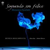 Sognando Son Felice by Musica Boscareccia