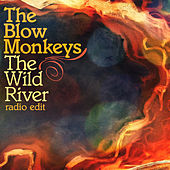 The Wild River (Radio Edit) by The Blow Monkeys
