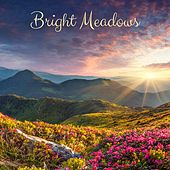 Bright Measows by Meditation Music Zone