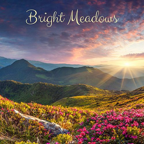 Bright Measows de Meditation Music Zone