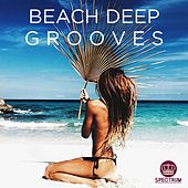 Beach Deep Grooves - EP by Various Artists