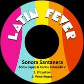 El Ladrón by La Sonora Santanera