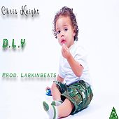 D.L.Y by Chris Knight