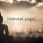 Natural Yoga, Vol. 1 (Chill Out & Zen Music For Relaxing And Yoga Workout) by Various Artists