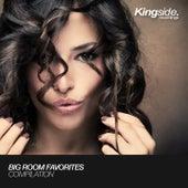 Big Room Favorites (Volume 1) by Various Artists