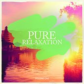 Pure Relaxation, Vol. 1 (Calm Electronic Tunes For Relaxation, Meditation and Chill) by Various Artists