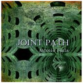 Joint Path by Antonio Feula