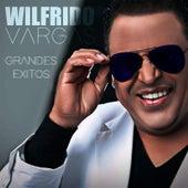 Grandes Exitos by Wilfrido Vargas