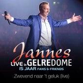 Zwevend Naar 't Geluk (Live In Gelredome) van Jannes