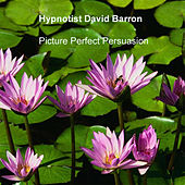 Play & Download Picture Perfect Persuasion by Hypnotist David Barron | Napster